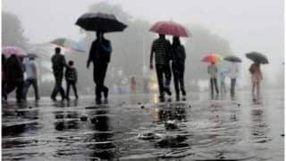 IMD Issues Red Alert To These Four Districts in Kerala, Heavy Rain Expected Over Tamil Nadu