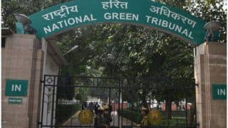NGT Extends Ban on Sale, Use of Firecrackers Amid Deteriorating Air Quality