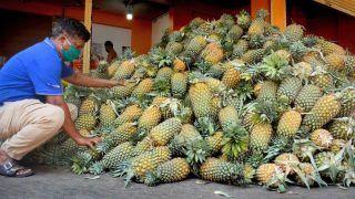 In Solidarity: Kerala Farmers Send 16 Tonnes of Pineapples to Protesting Peasants in Delhi
