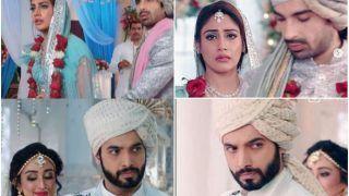 Naagin 5 Written Update, December 26: Veer Calls Off Wedding With Chandni, Chooses Bani Over Vamp