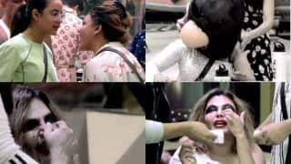 Bigg Boss 14: Jasmin Bhasin Slams Rakhi Sawant's Head With Bird Mask, Did She Break Her Nose?