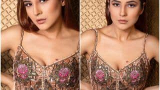 Shehnaaz Gill Steals The Show In Rocky Star's Rs 97K Floral Dress, See PICS