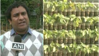Go Green! IRS Officer Uses Waste Plastic Bottles to Create Vertical Gardens in Ludhiana