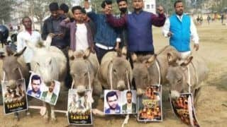 'Donkey March' Against Tandav in Patna, Placards Saying 'Hindu Virodhi' Hanged Around Their Necks