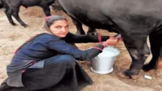 Amazing: इस महिला ने पेश की मिसाल, दूध बेचकर सालाना 1 करोड़ कमाती है...