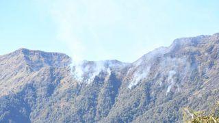 Watch: IAF Chopper Lifts Water in Bambi Bucket To Douse Forest Fire Nagaland's Dzukou Range