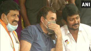 राहुल गांधी Madurai में जल्लीकट्टू देखते आए नजर, टि्वटर पर ट्रेंड हुए गोबैक राहुल, वेलकम नड्डाजी