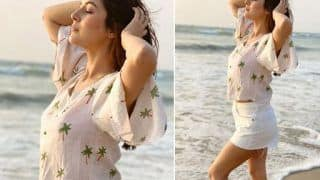 Sadda Kutta Kutta Fame Shehnaaz Gill Looks Breathtaking in White Crop Top And Hot Pants In Latest IG Picture