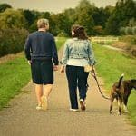 Work-Related Stress Eating Your Brain? Walk in Green Spaces, Here is Why