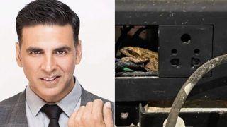 अक्षय कुमार को मेंढक ने नहीं चार्ज करने दिया फोन, स्विच बोर्ड पर किया 'कब्ज़ा', एक्टर ने कहा...