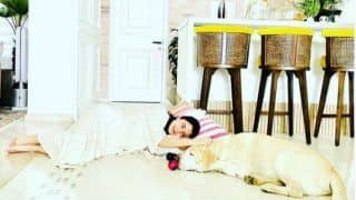 Serial Chillers! Anushka Sharma Spends Quality Time With Her Doggo, Sleeps Next to Him on Floor