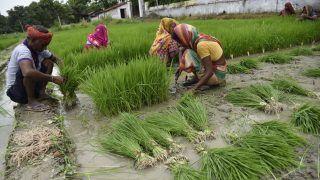 PM Kisan Samman Nidhi Yojana: Rs 75,000 Crore Allocated For Farmers | Quick Recap Budget 2021