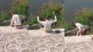 Video of Man Bowing and Speaking to Crocodile by Riverside Goes Viral | Watch