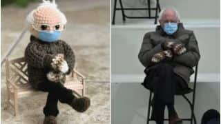 Woman Turns Bernie Sanders' Mittens Meme Into A Crochet Doll, Raises Over $40,000 For Charity