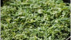 Health Benefits Of Green Gram Saag: सर्दियों में खाएं चने का साग, स्वादिष्ट होने के साथ ही सेहत के लिए भी है बेहद खास
