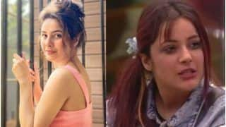 Shehnaaz Gill Reacts to 'Twada Kutta Tommy, Sadda Kutta Kutta' Mashup: Shocked, Happy That You All Made it Viral