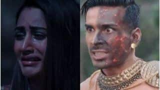 Naagin 5 January 30, 2021, Written Episode: Bani Comes to Know That Jay Will Kill Her