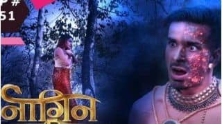 Naagin 5 January 31, 2021, Written Episode: Bani And Jay Fight For Their Lives, But Who Will Win?