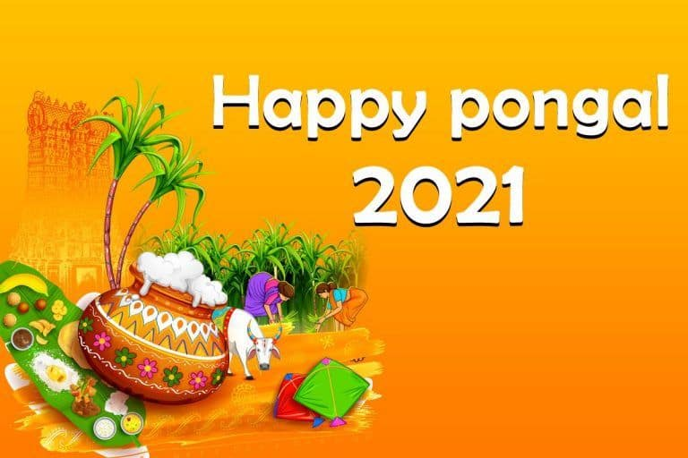 Pongal 2021: Top Wishes, Quotes, Whatsapp Greetings, SMS To Share With Your Family and Friends