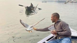 Shikhar Dhawan Feeds Birds in Varanasi Flouting Rules, Boatman to Face Action