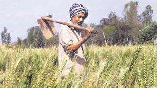 Kisanon Ka Loan Maaf Hoga Ya Nahin: क्या माफ होगा किसानों का कर्ज? लोकसभा में भारत सरकार ने दिया बड़ा बयान