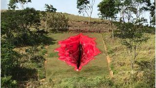 Visual Artist Creates 33-Metre Vagina Sculpture in Brazil, Sparks Controversy