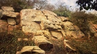 IndiaMART CEO, 2 Others Booked For Selling Govardhan Hill Rocks Online