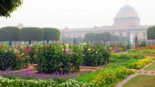 Mughal Gardens Open For General Public From Tomorrow: Check Nearest Metro Station, Online Booking Link Here