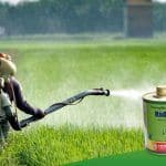 Heranba Industries IPO: Here's How you Can Invest, Check Price Band of this Gujarat Agro-Chemical Company