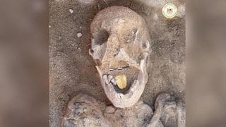 2,000-Year-Old Gold Tongued Mummy Uncovered at a Burial Site in Egypt