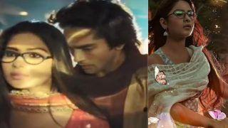 Kuch Toh Hai Naagin Ek Naye Rang Mein, 14th February 2021, Written Update: Rehan And Priya Get Close to Each Other