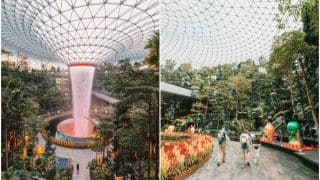 Singapore's Changi Airport Pics: Inside World's Best Airport With Largest Indoor Waterfall