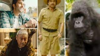 Hello Charlie Trailer Out: Aadar Jain Joins a Gorilla in This Comedy, Jackie Shroff Goes Hiding