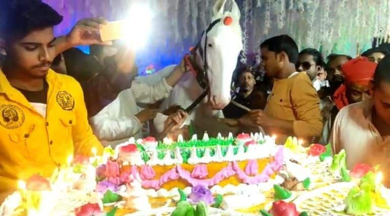 How do You Celebrate a Horse Birthday? Bihar Man Shows The Way