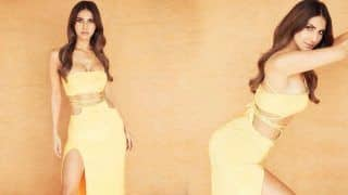 Vaani Kapoor Spreads Sultry Magic in Rs 15,678 Bralette And Skirt