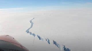 Massive Iceberg More Than 20 Times The Size of Manhattan Breaks Off Antarctic Ice Shelf | Watch Video