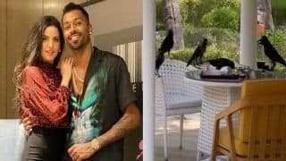 IPL 2021: Hardik Pandya, Natasa Stankovic And Crows Party in Unique Fashion | WATCH VIDEO