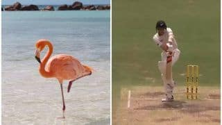 Flamingo? Jaffer PREDICTS Player to Watch Out For During IPL Season Opener