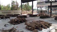 Covid in Chhattisgarh Update: जलती लाशों का धुंआ बना आफत, छत्तीसगढ़ में 90 हजार से ज्यादा एक्टिव केस