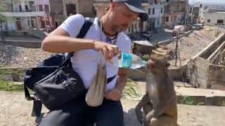 Viral Video: Man Helps Monkeys Drink Water From His Bottle | Watch