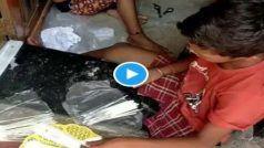 Covid-19 Test Kits Video: कोरोना टेस्ट किट की पैकिंग में हो रहा खिलवाड़, यकीन नहीं है तो ये वीडियो देख लीजिए...