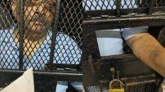 मेहुल चोकसी को डोमिनिका में जेल भेजने का आदेश, अस्पताल में इलाज चलता रहेगा: वकील