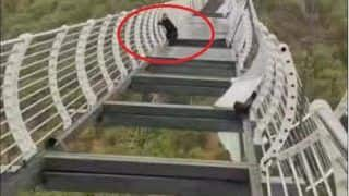 Man Holds On To The Rope After 100 Metre-High Glass Bridge in China Shatters | Photos