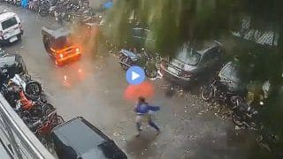 Viral Video: Mumbai Woman Has Narrow Escape After Giant Tree Almost Fell Over Her   Watch