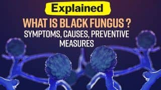 What is Black Fungus? Latest Symptoms, Causes, Preventive Measures Explained | Watch Video