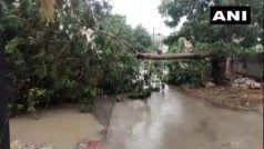 CycloneTauktae LIVE: सौराष्ट्र के तटीय इलाकों की ओर बढ़ा तूफान, 21 जिलों में भारी बारिश का अलर्ट