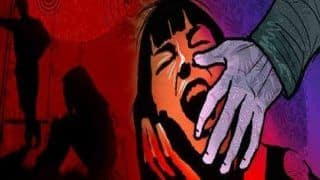 Haryana Horror: 10-year-old Girl Raped by 9 People in School, FIR Filed After Video Goes Viral