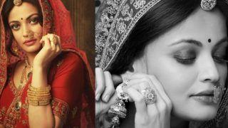 Aishwarya Rai Bachchan Fans Are in Shock to See Sneha Ullal's Latest Pics, Call Her 'Aishwarya Ki Xerox'