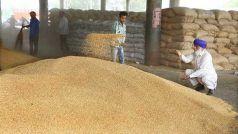 Wheat Procurement: केंद्र सरकार ने किसानों के खाते में सीधे भेजे 49,965 करोड़ रुपये