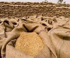 Wheat procurement in UP: योगी सरकार ने अखिलेश सरकार से 8 गुना अधिक गेहूं खरीदा, चालू वित्त वर्ष में की गई 56.25 लाख टन गेहूं की खरीद